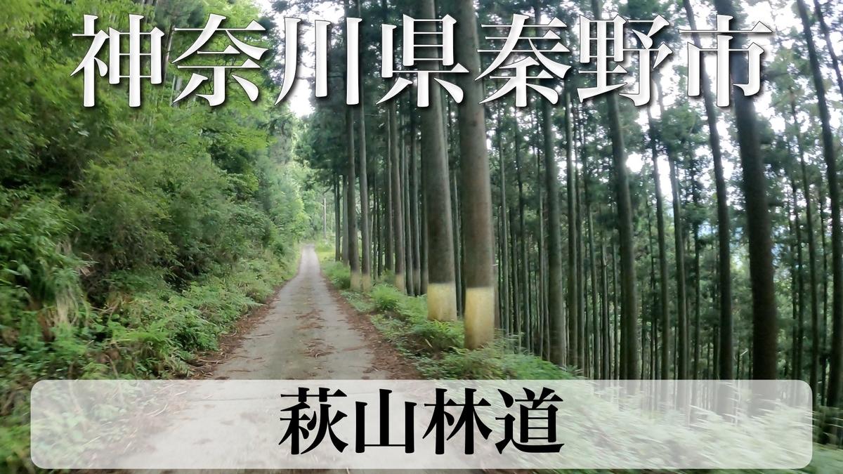 f:id:zakiyamatakashi:20210618203117j:plain