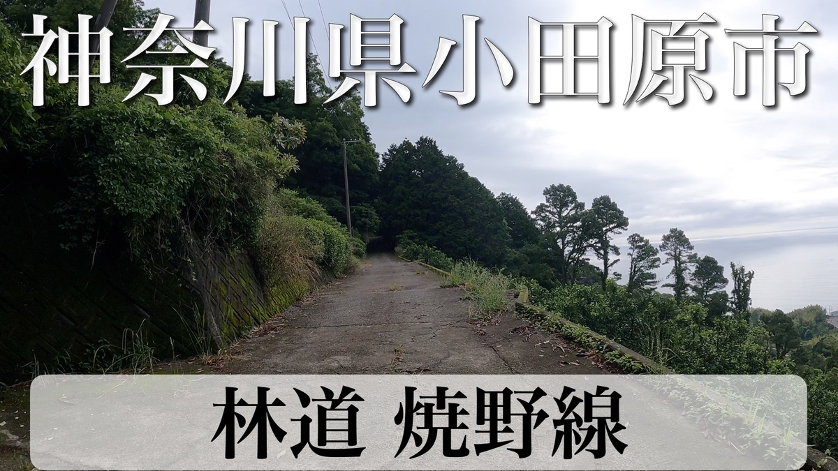 f:id:zakiyamatakashi:20210717152456j:plain