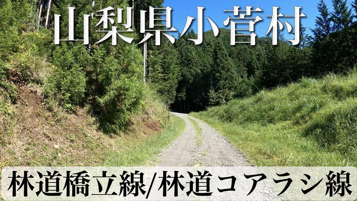 f:id:zakiyamatakashi:20210821175813j:plain