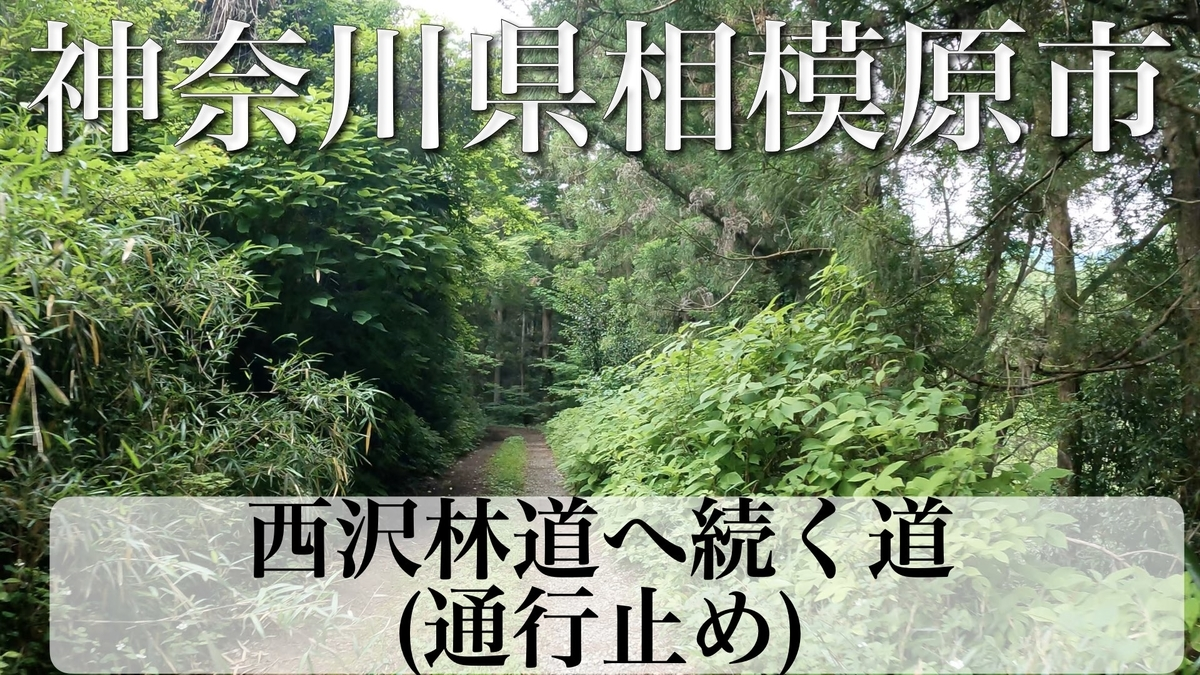 f:id:zakiyamatakashi:20210926040905j:plain