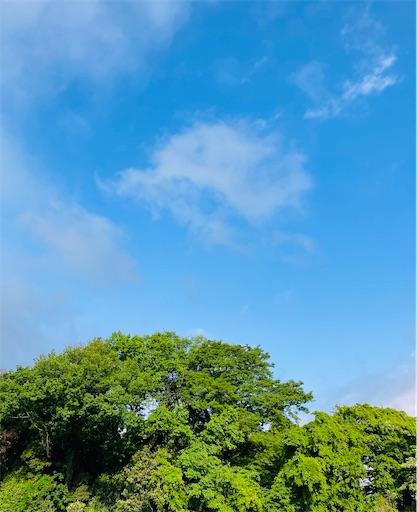 f:id:zakiyamazaki:20210502071127j:image