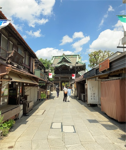 f:id:zakiyamazaki:20210617081532j:image