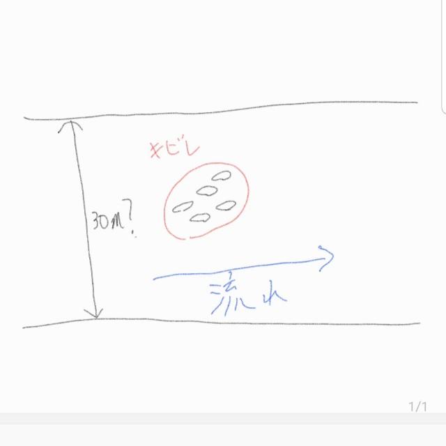 f:id:zako-angler:20201220201938j:image