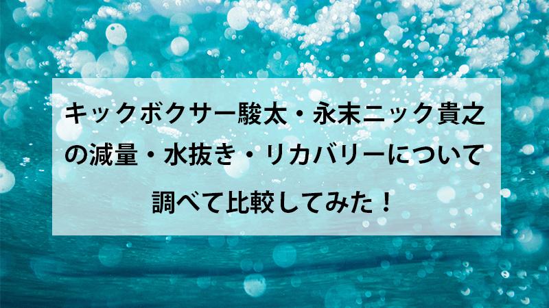 f:id:zamatsuyoshi:20200521160742j:plain