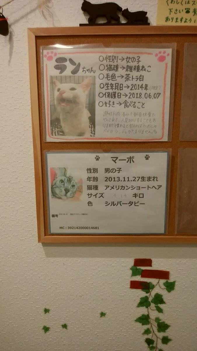 f:id:zanshi_h:20200227191045j:plain