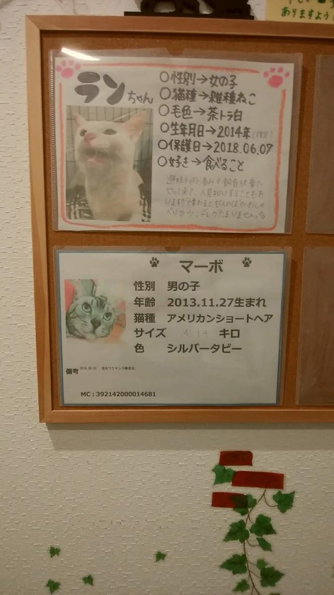 f:id:zanshi_h:20200312183710j:plain