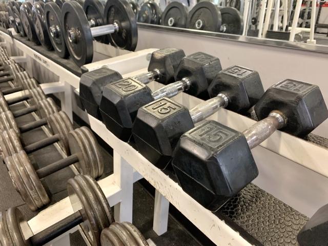 f:id:zansu--fitness:20200203230044j:plain