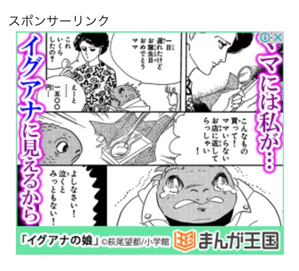 f:id:zashikiuwarashi:20170528214422j:image