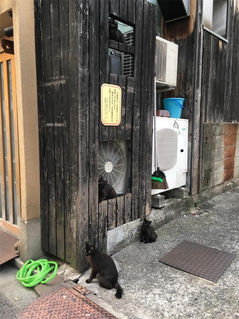 f:id:zashikiuwarashi:20170801230051j:image
