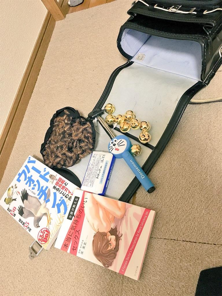 f:id:zashikiuwarashi:20171118202208j:image