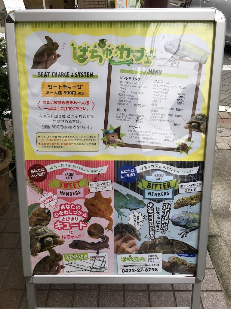 f:id:zashikiuwarashi:20180621224037j:image