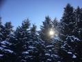 よく晴れた冬の陽に