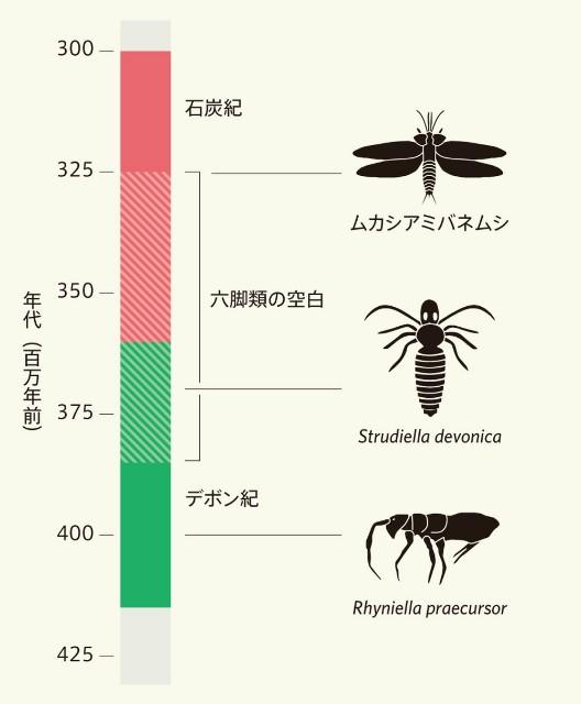 f:id:zatsugakurei517:20210420223424j:image