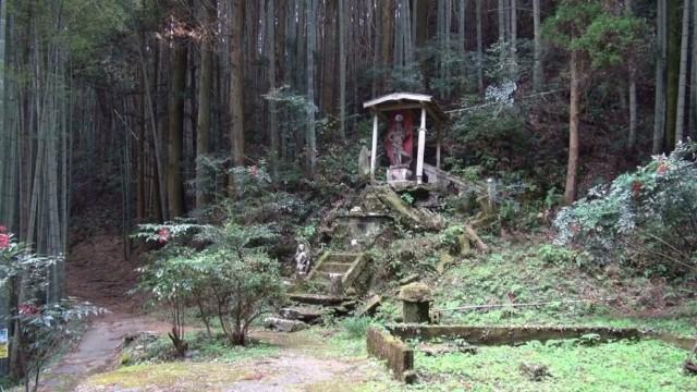 f:id:zatsugakurei517:20210716234921j:image