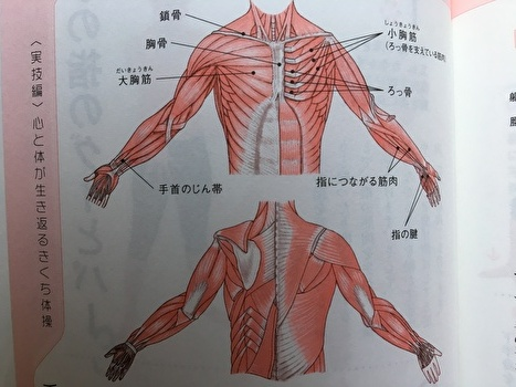 f:id:zatugakutanosii:20190726161930j:plain
