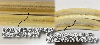 f:id:zatugakutanosii:20190822142551p:plain