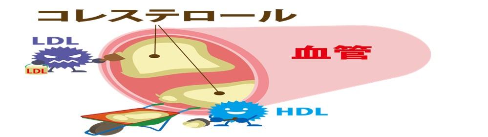 f:id:zatugakutanosii:20191226155455j:plain
