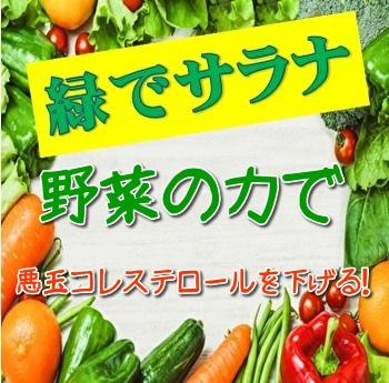 f:id:zatugakutanosii:20200102181533j:plain