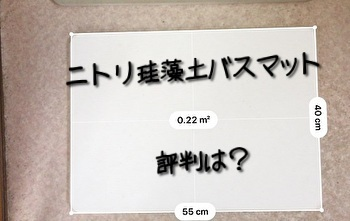 f:id:zatugakutanosii:20200422171537j:plain