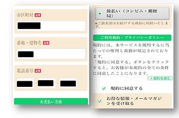 f:id:zatugakutanosii:20200526175519j:plain