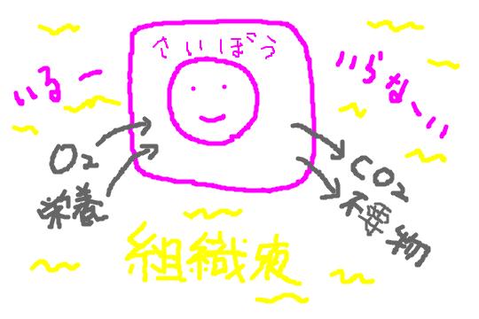 f:id:zawazawawa:20170122180808p:plain