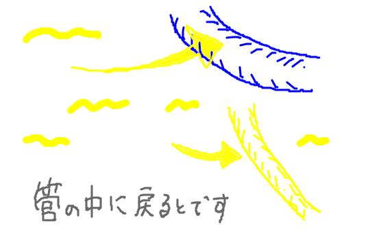 f:id:zawazawawa:20170122181410p:plain