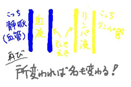 f:id:zawazawawa:20170122182507p:plain