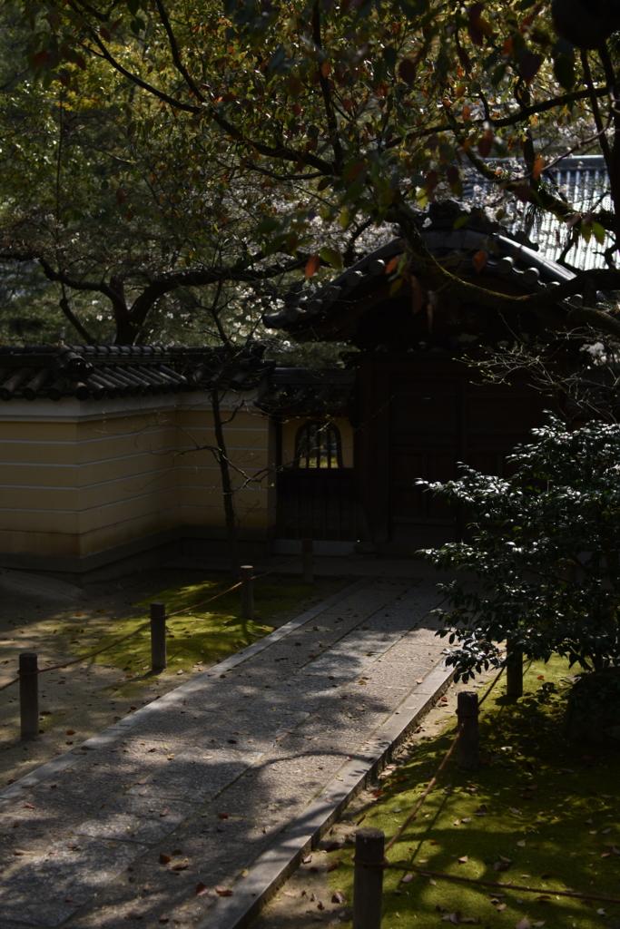 f:id:zawazawawa:20170406174631j:plain