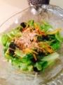 野菜フライ レタス海苔サラダ ほうれん草とちくわのゴマ和え