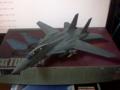 ハセガワ製1/72のF-14Aトムキャット開