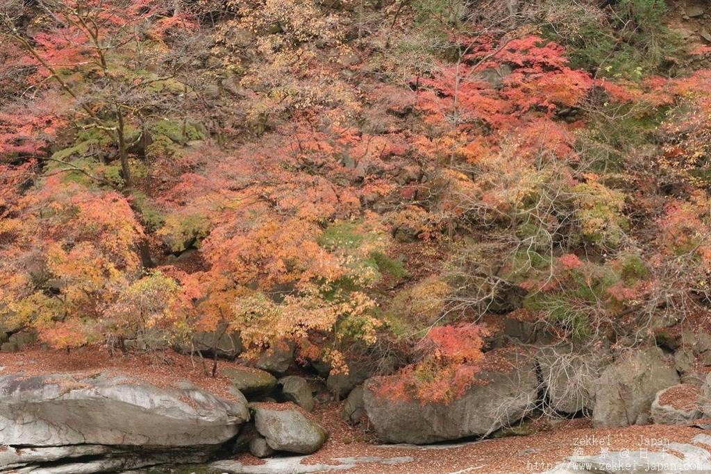 わたらせ渓谷の紅葉