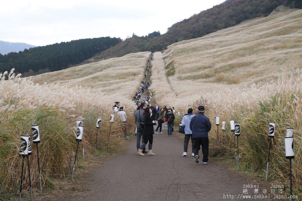 f:id:zekkei-japan:20171108224142j:plain