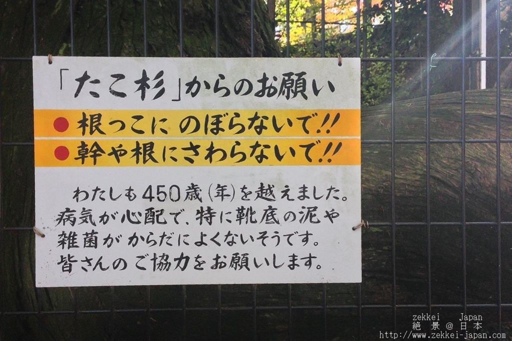 f:id:zekkei-japan:20171124072006j:plain