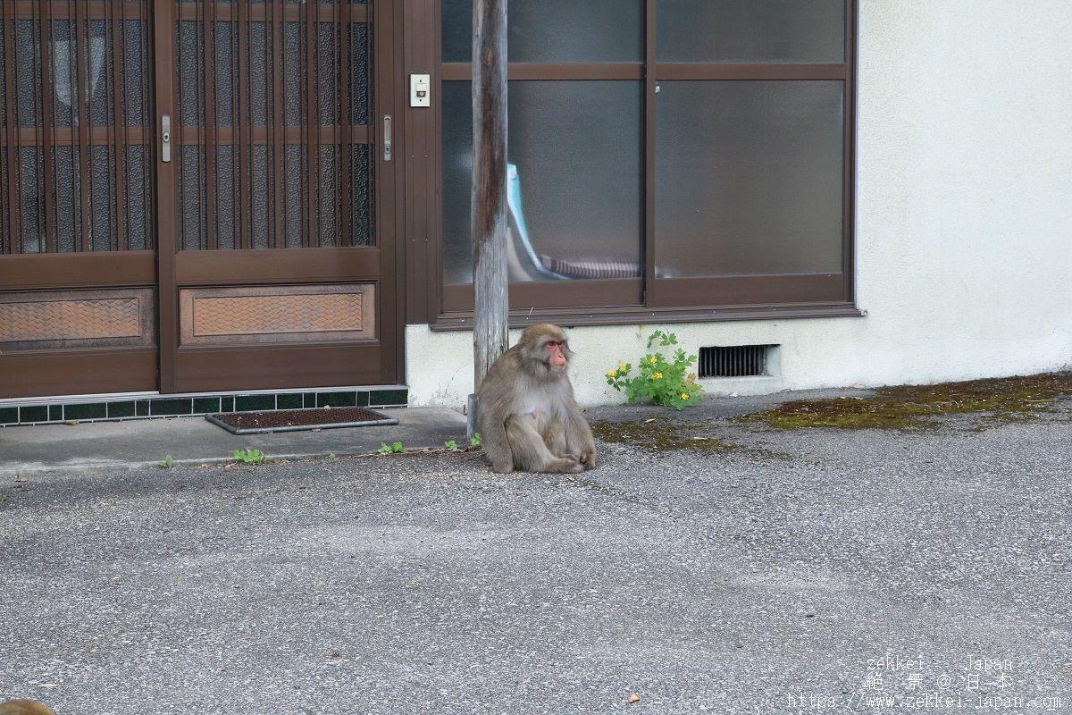 f:id:zekkei-japan:20190830124034j:plain