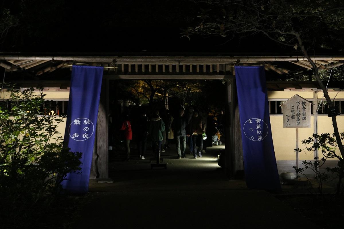 f:id:zekkei-japan:20191120215601j:plain