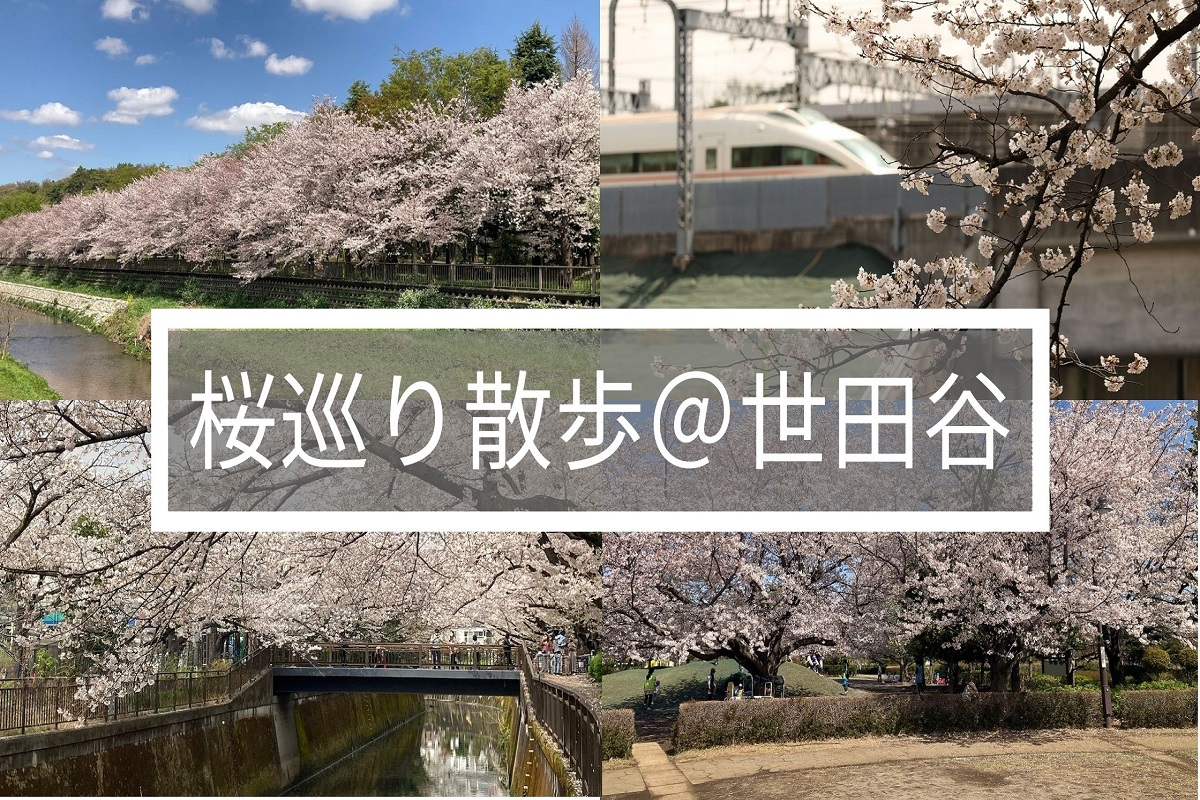 f:id:zekkei-japan:20210405181156j:plain