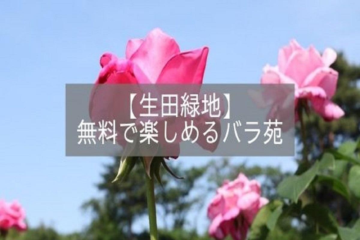 f:id:zekkei-japan:20210516174420j:plain