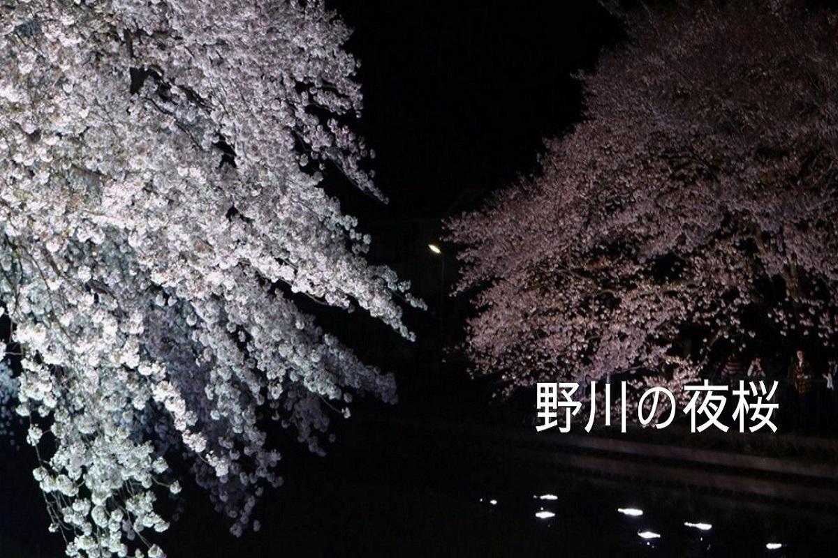 f:id:zekkei-japan:20210531182243j:plain