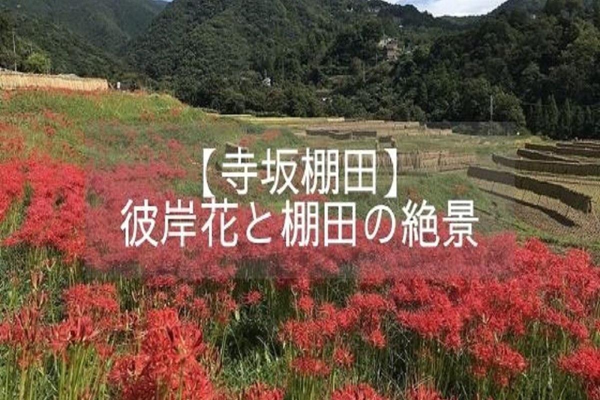 f:id:zekkei-japan:20210606062018j:plain