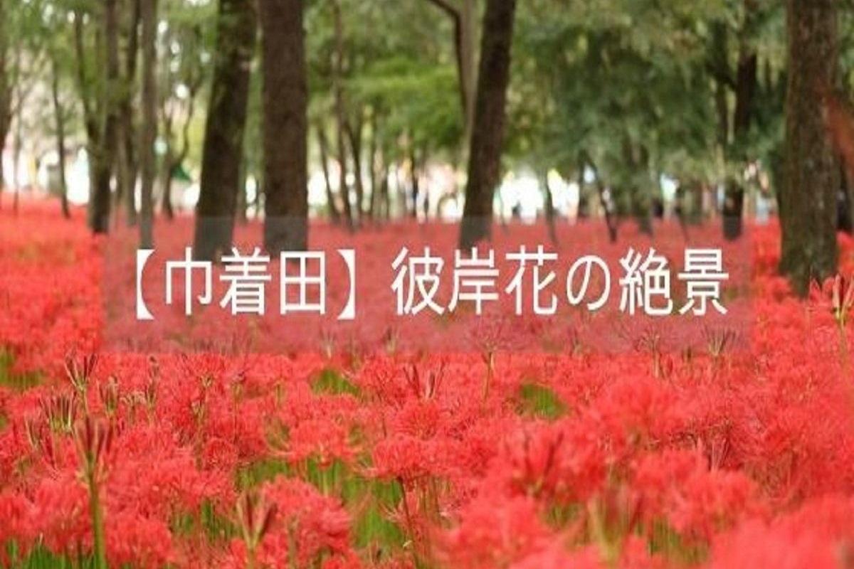 f:id:zekkei-japan:20210606064316j:plain