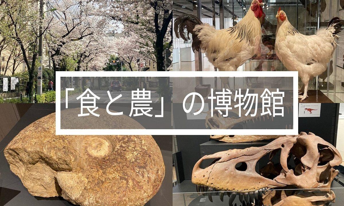 f:id:zekkei-japan:20210620213648j:plain