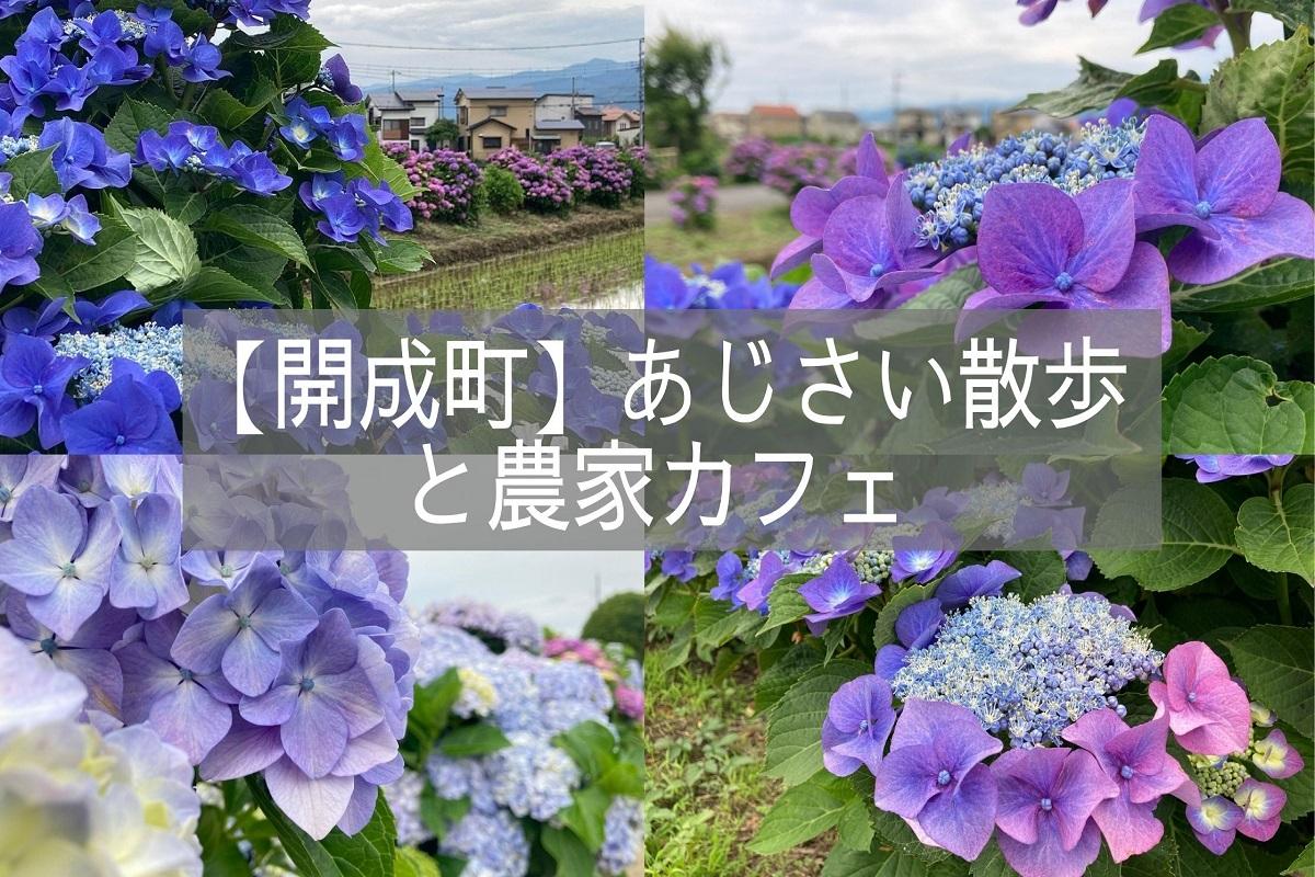 f:id:zekkei-japan:20210718062650j:plain