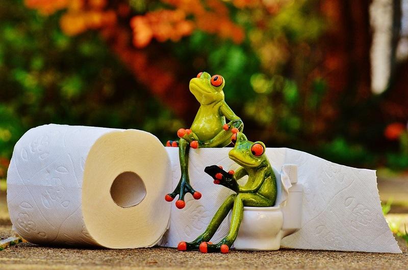 トイレの紙がない