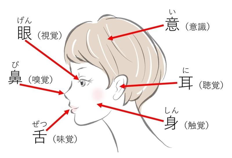 六根(眼耳鼻舌身意),図説
