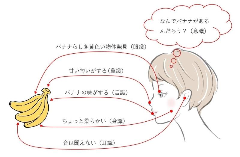 六識(眼耳鼻舌身意),図説
