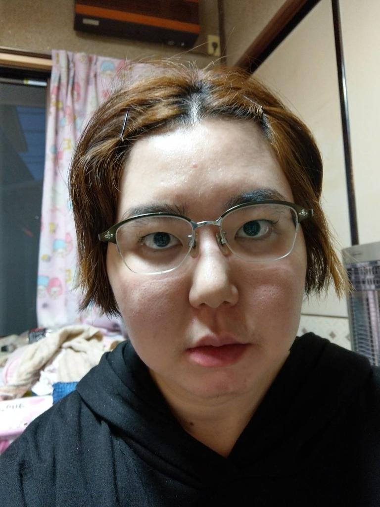 f:id:zenkomaki:20190204121434j:plain