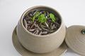 [上田][長野][和食][膳][Japanesefood][食][料理]冷製じゅんさい茶碗蒸し