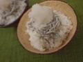 [上田][長野][和食][膳][Japanesefood]いかなごご飯