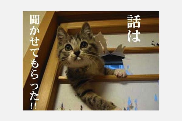 f:id:zenzensuki:20190606204705p:plain