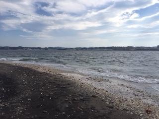 猿島 砂浜